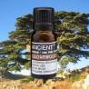 Olio essenziale Cedro della Virginia (legno)